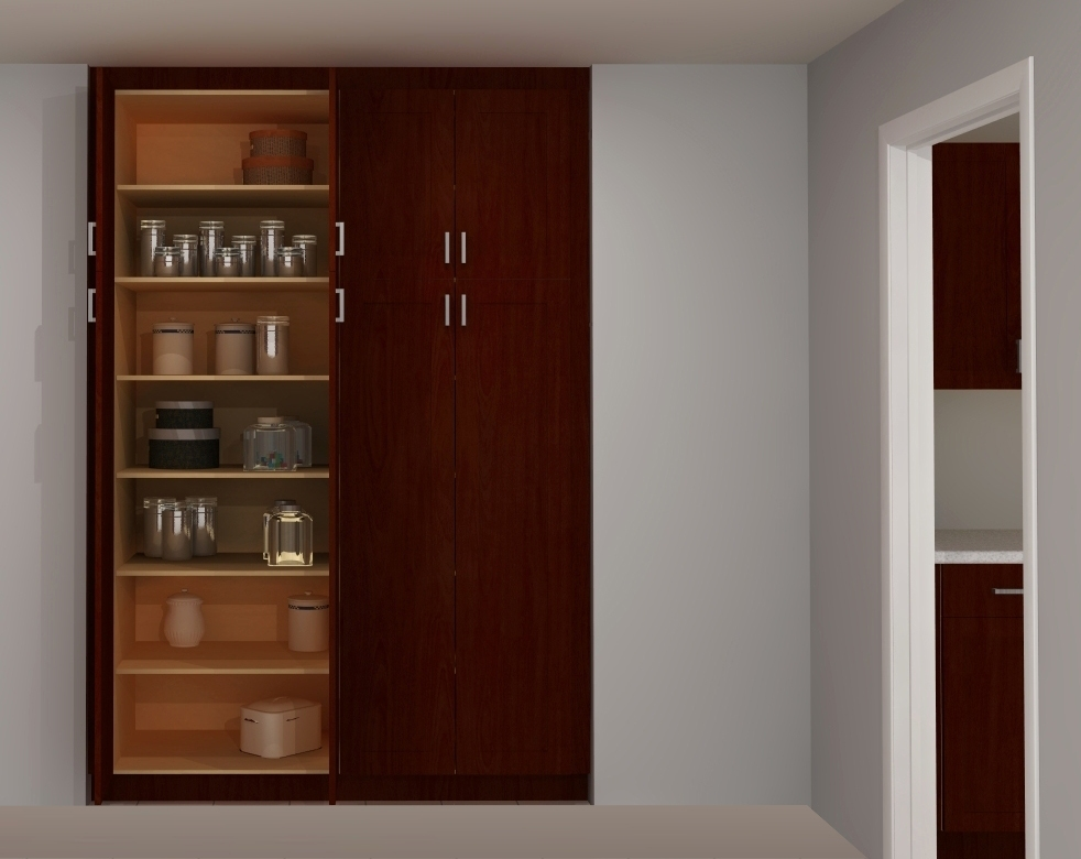 Useful spaces a built in ikea pantry for Kitchen cabinet shelves